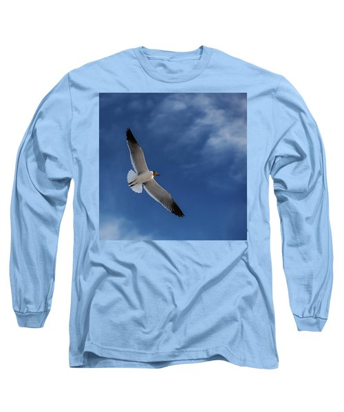 Glider Long Sleeve T-Shirt by Don Spenner