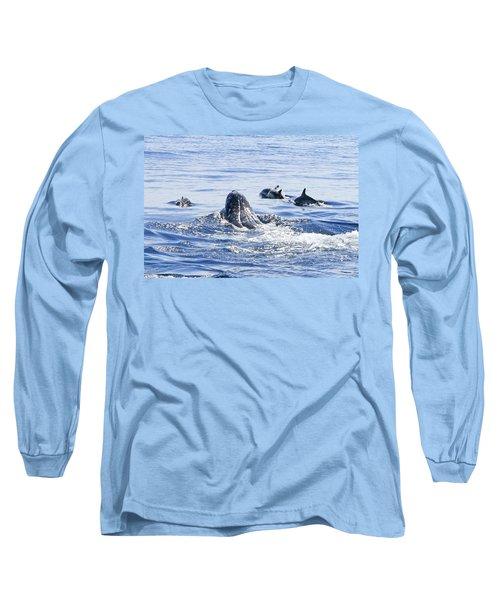 Grey Whale 1 Long Sleeve T-Shirt