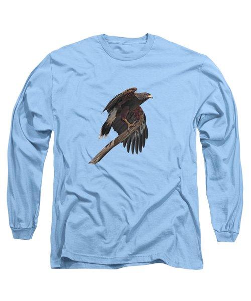 Harris Hawk - Transparent Long Sleeve T-Shirt by Nikolyn McDonald