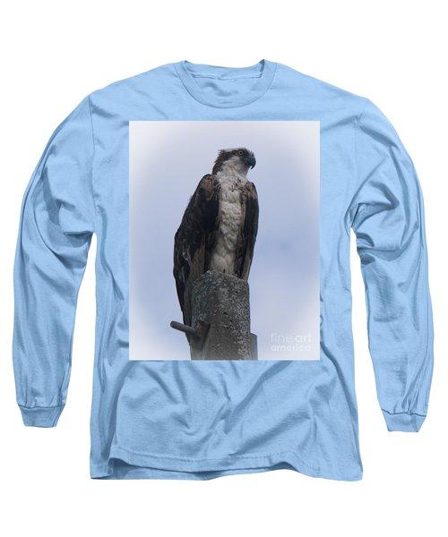 Hawk Pose Long Sleeve T-Shirt
