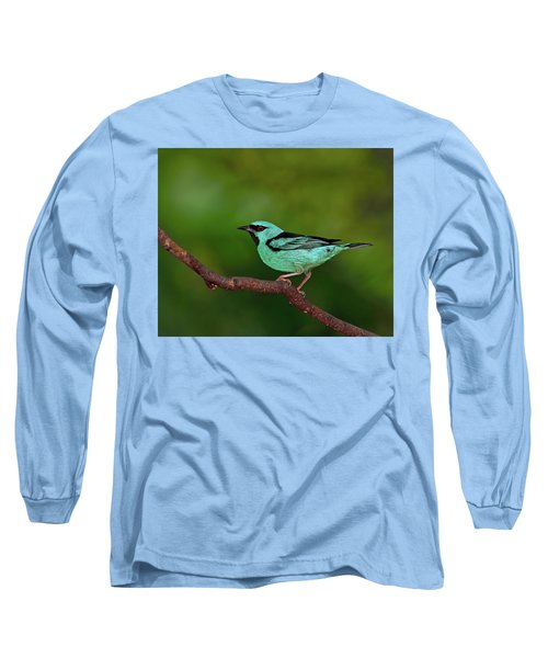 Highlight Long Sleeve T-Shirt by Tony Beck