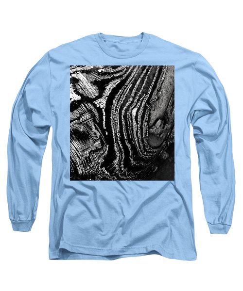 Hog Fish Float Three Long Sleeve T-Shirt by Expressionistart studio Priscilla Batzell