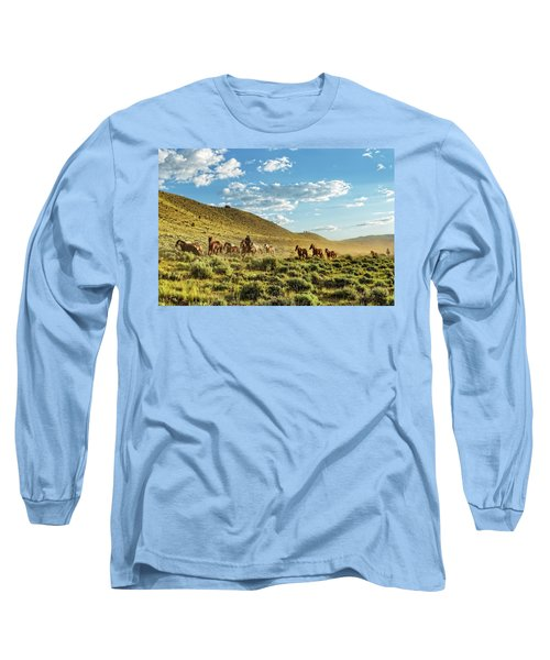 Horses And More Horses Long Sleeve T-Shirt