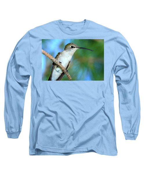 Hummingbird I Long Sleeve T-Shirt