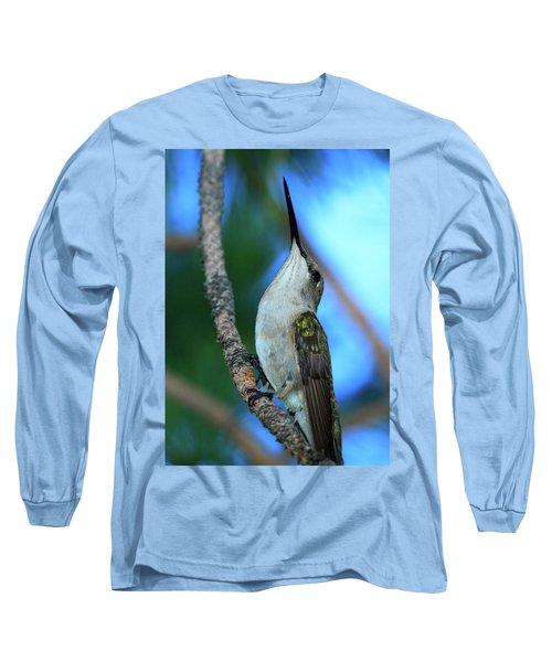 Hummingbird II Long Sleeve T-Shirt by Paul Marto