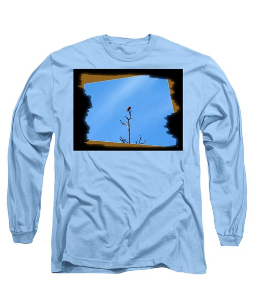 Hummingbird Optical Zoom Long Sleeve T-Shirt