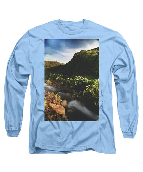It Was A Hard Winter Long Sleeve T-Shirt by Laurie Search