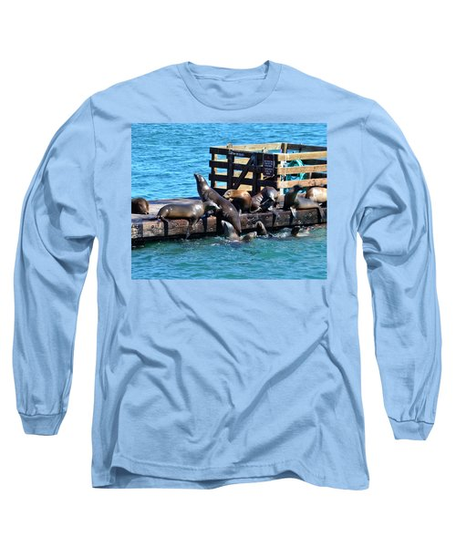 Keep Off The Dock - Sea Lions Can't Read Long Sleeve T-Shirt