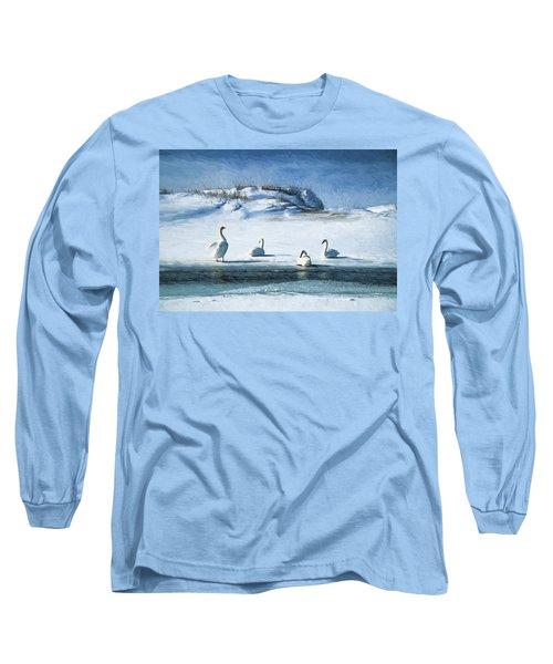 Lake Michigan Swans Long Sleeve T-Shirt by Dennis Cox WorldViews