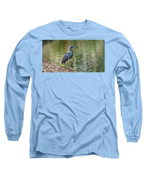 Lesser Blue Heron In Mating Plumage Long Sleeve T-Shirt by Judy Wanamaker