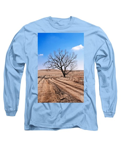Lone Tree February 2010 Long Sleeve T-Shirt