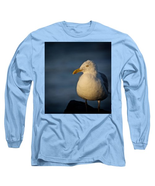 Lonely Gull Long Sleeve T-Shirt