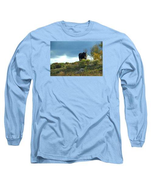Lonesome Donkey Long Sleeve T-Shirt