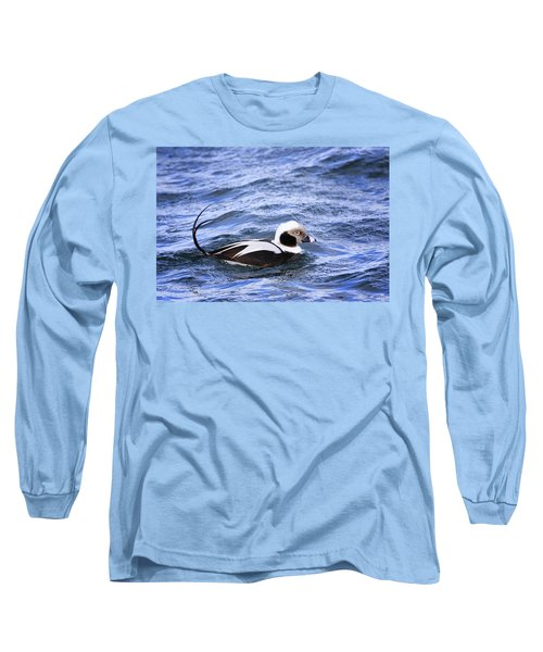 Long-tailed Duck 2 Long Sleeve T-Shirt