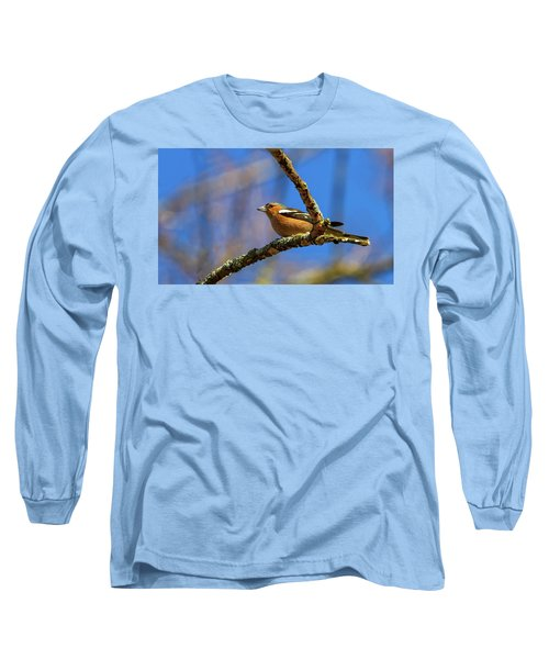 Male Common Chaffinch Bird, Fringilla Coelebs Long Sleeve T-Shirt