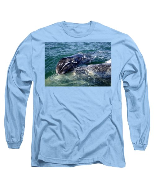Mother Grey Whale And Baby Calf Long Sleeve T-Shirt