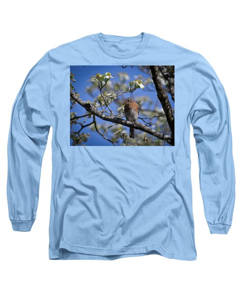 Nest Building Long Sleeve T-Shirt by Douglas Stucky