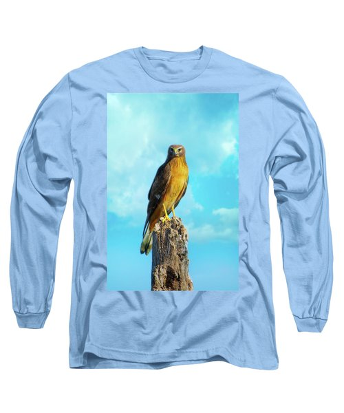 Northern Harrier Hawk Long Sleeve T-Shirt