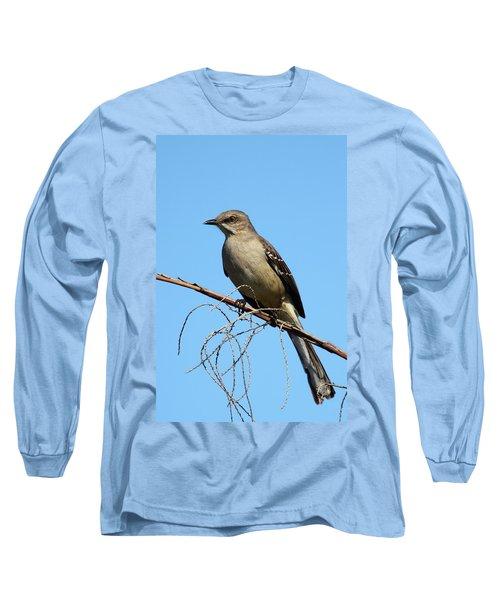 Northern Mockingbird Long Sleeve T-Shirt by Bruce J Robinson
