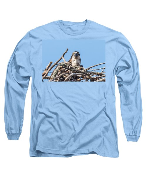 Osprey Eyes Long Sleeve T-Shirt by Paul Freidlund