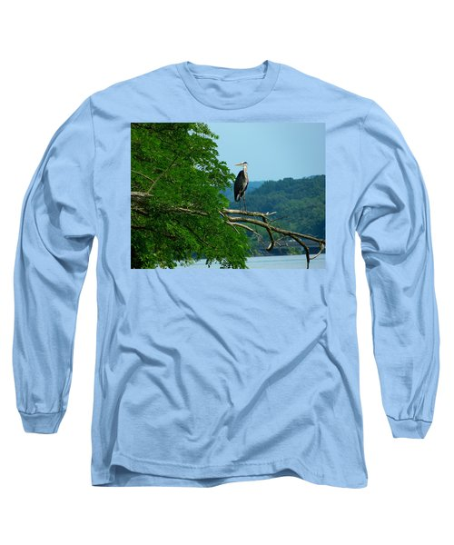 Out On A Limb Long Sleeve T-Shirt by Donald C Morgan
