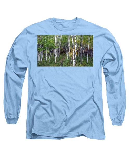 Path In The Woods 5 Long Sleeve T-Shirt