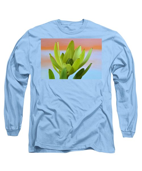 Protea Gold Strike. Long Sleeve T-Shirt by Terence Davis