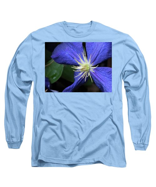 Purple Clematis Long Sleeve T-Shirt by Rebecca Overton