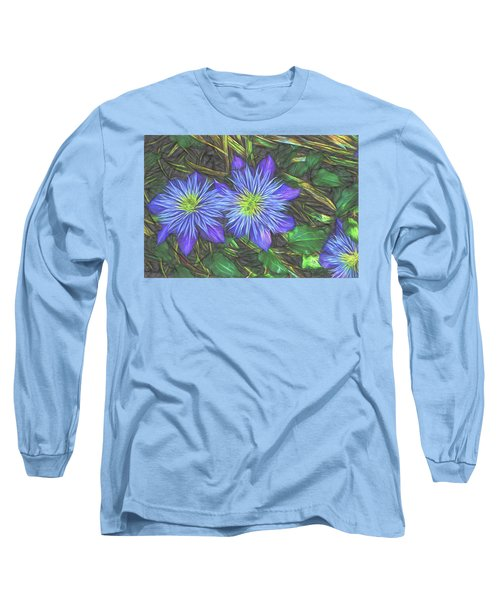 Purple Passion Long Sleeve T-Shirt by Terry Cork