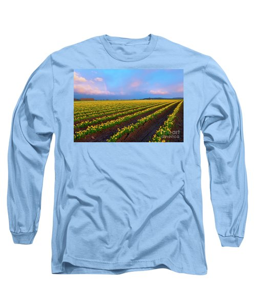 Long Sleeve T-Shirt featuring the photograph Rainbows, Daffodils And Sunset by Mike Dawson