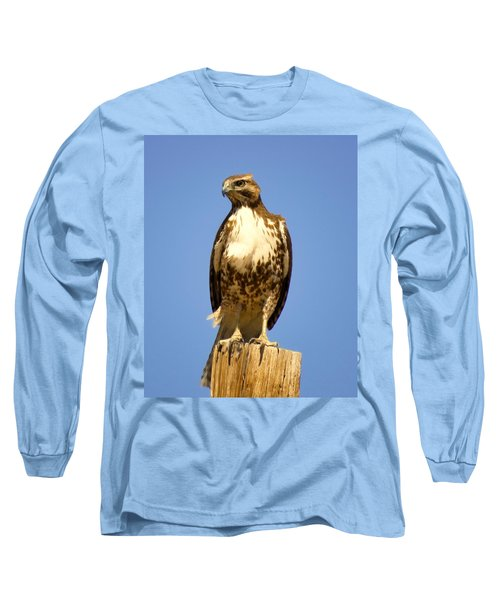 Red-tailed Hawk On Post Long Sleeve T-Shirt