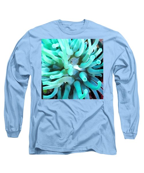 Sea Anemone And Squat Shrimp Long Sleeve T-Shirt by Amy McDaniel