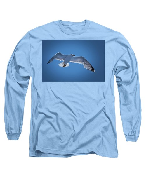 Long Sleeve T-Shirt featuring the photograph Seagull by Davor Zerjav