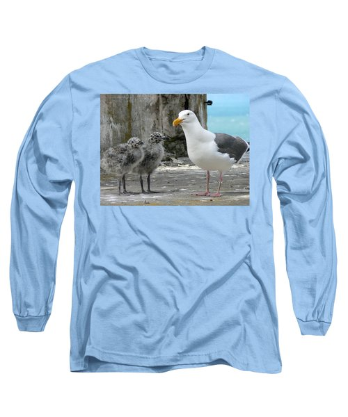 Seagull Family Long Sleeve T-Shirt by Laurel Powell