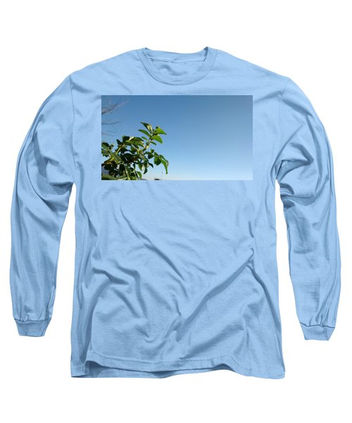 Simple Prosperity II Long Sleeve T-Shirt