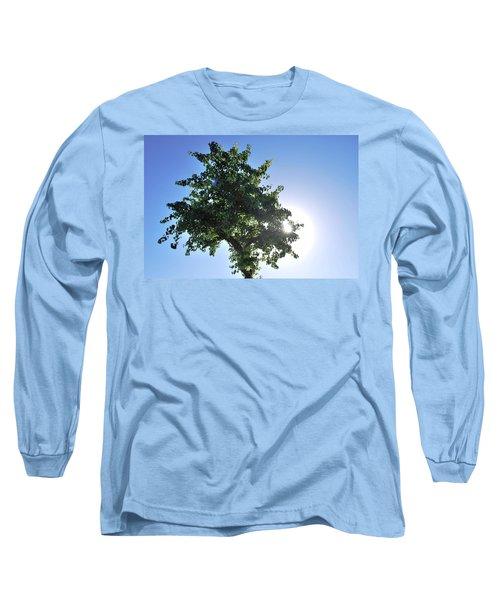 Single Tree - Sun And Blue Sky Long Sleeve T-Shirt by Matt Harang