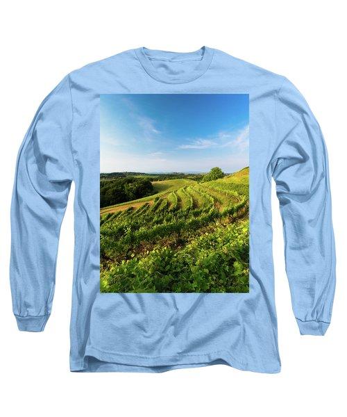 Long Sleeve T-Shirt featuring the photograph Spring Vinyard by Davor Zerjav