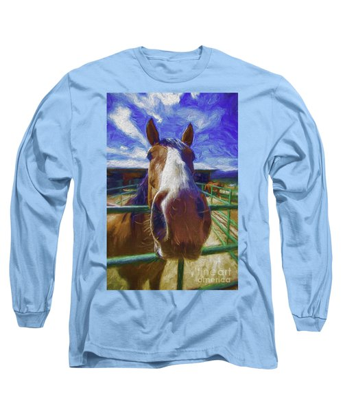 Stable Blues  Long Sleeve T-Shirt