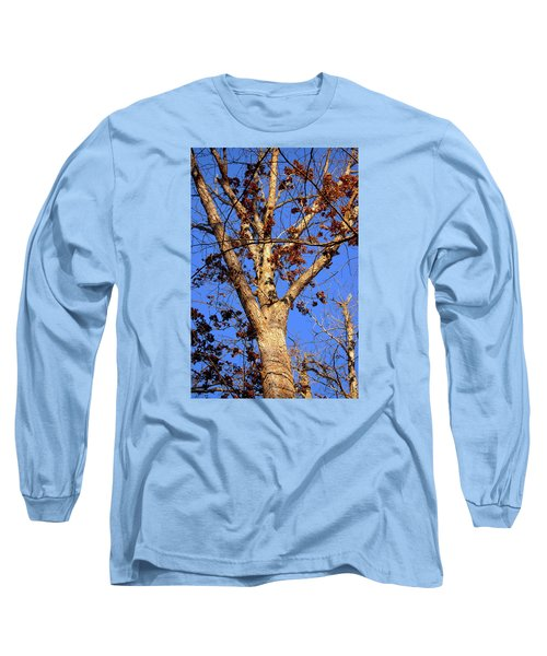 Stunning Tree Long Sleeve T-Shirt