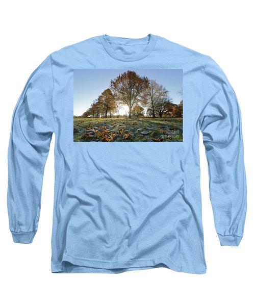 Sunrise Through Lime Trees Long Sleeve T-Shirt