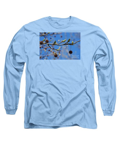 Long Sleeve T-Shirt featuring the photograph Sweet Gum Catkins 20120405_206a by Tina Hopkins