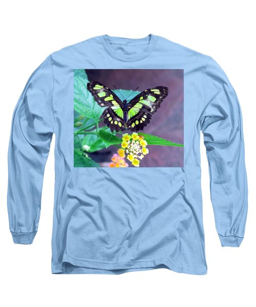 Tailed Jay Visits Lantana Long Sleeve T-Shirt