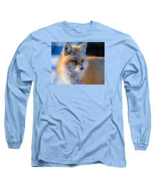 Long Sleeve T-Shirt featuring the photograph The Red Fox Portrait In Snow by Yeates Photography