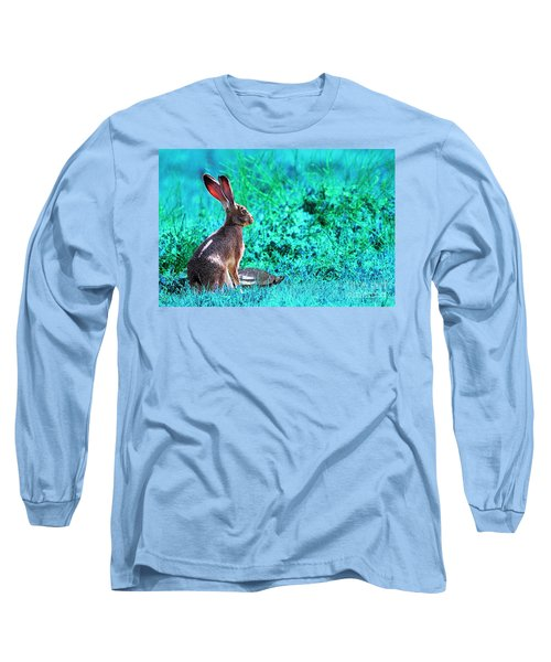 The Tortoise And The Hare . Cyan Long Sleeve T-Shirt