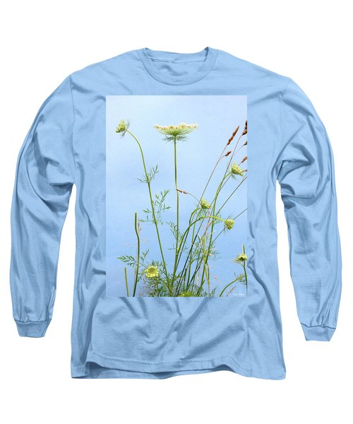 Tuft Of Queen Anne's Lace Long Sleeve T-Shirt