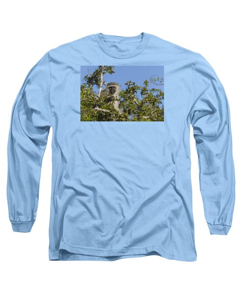 Vervet Monkey Perched In A Treetop Long Sleeve T-Shirt