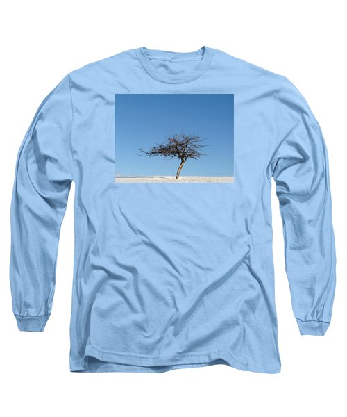 Winter At The Crabapple Tree Long Sleeve T-Shirt