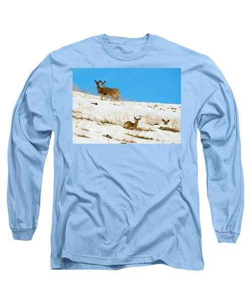 Long Sleeve T-Shirt featuring the photograph Winter Deer by Mike Dawson