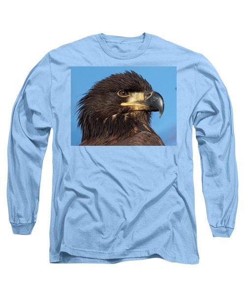 Young Eagle Head Long Sleeve T-Shirt by Sheldon Bilsker