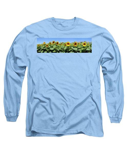 Sunflowers Helianthus Annuus Long Sleeve T-Shirt